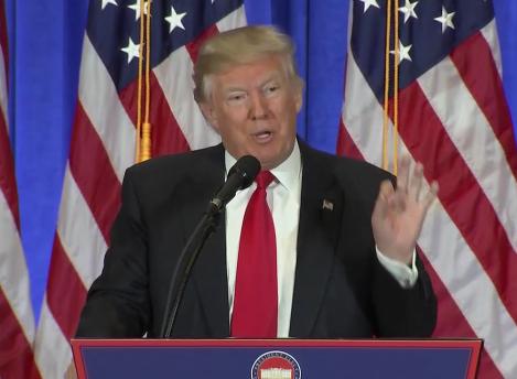 The Donald: Von den Höhen und Tiefen im ersten Jahr