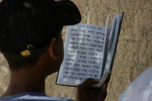 Gibt es jetzt bösen und guten Antisemitismus? Warum unternimmt unser Staat nichts gegen linke und muslimische Hetzer?